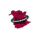 Logo: Ringette - New Brunswick